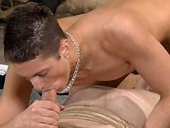 Ashton Bradley and Mates bondage and domination oral sex