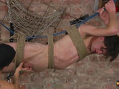 A Feast Of Cock For Mickey - Ross Drake And Mickey Taylor