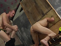 Buggered In The Stocks! - Michael Wyatt & Sean Taylor